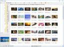 PhotoScape - список изображений